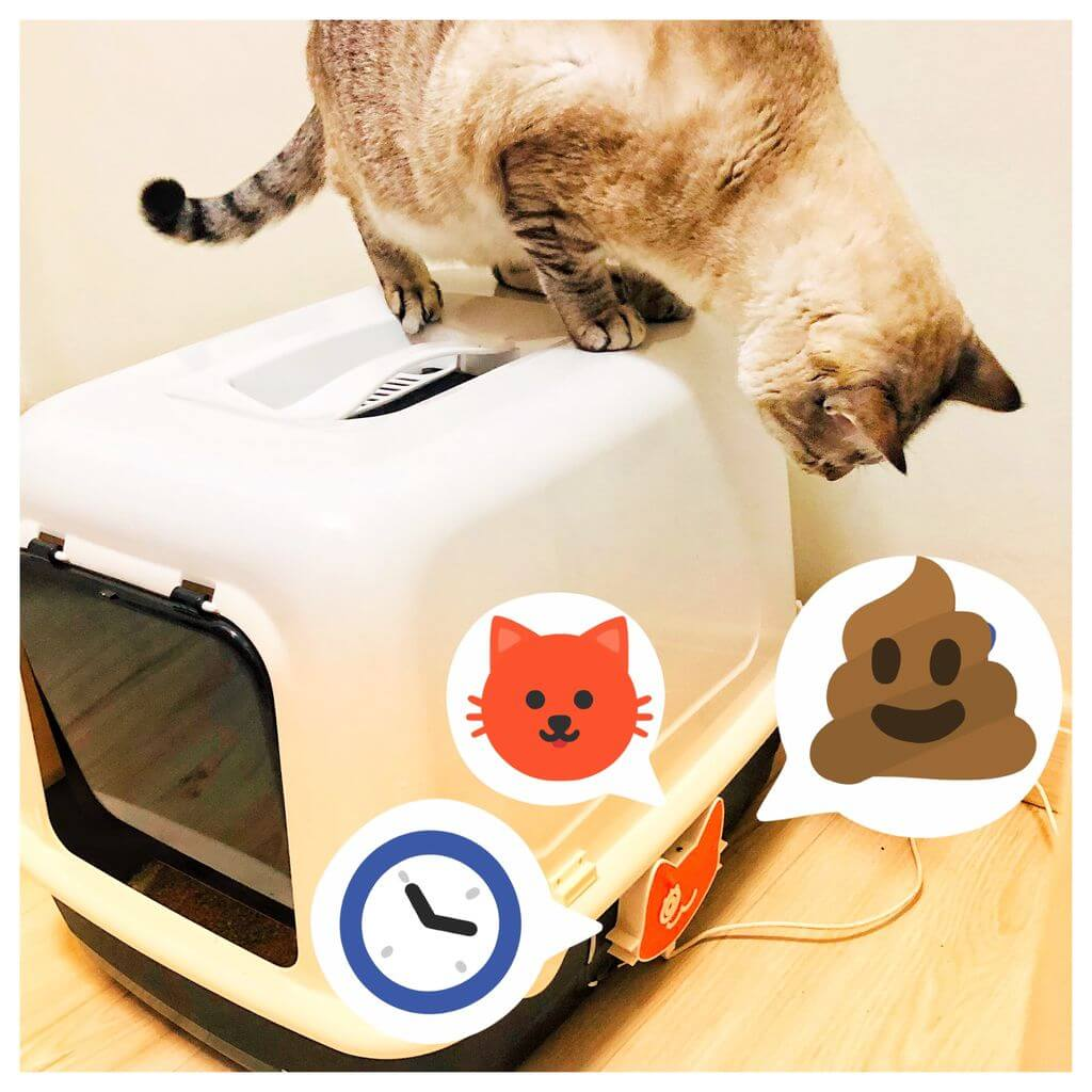 IoT Cat Litter Box (with ESP32, Arduino IDE, Thingspeak and