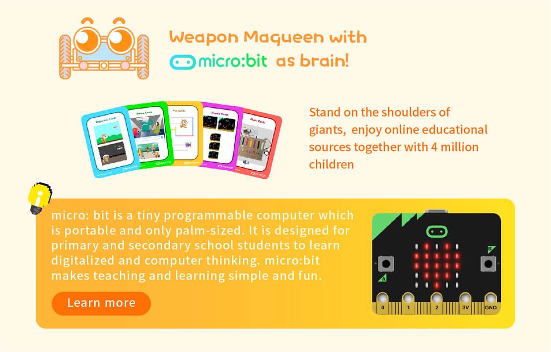 micro : bit-어린이를위한 교육적이고 창의적인 도구, micro : bit