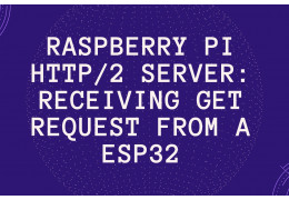 Raspberry Pi HTTP/2 server: Receiving GET request from a ESP32