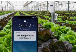 Temperature Monitoring System on Plants
