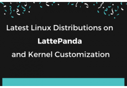 Latest Linux Distributions on LattePanda and Kernel Customization
