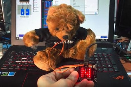 Microbit Projects: Yes/No Bear