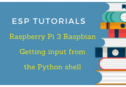 Raspberry Pi 3 Raspbian Tutorial: Getting input from the Python shell