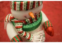 Raspberry pi 3 Project - Frosty the SPyman