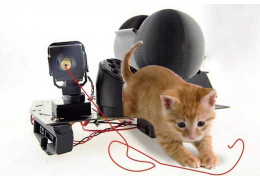 Pet Interactive Device
