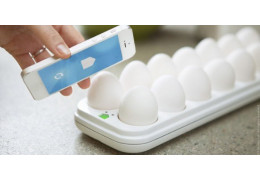 GE's Egg Minder counts your chickens before they hatch