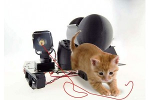 How to Make a Pet Interactive Device with 4WD Mobile Robot