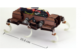 UC Berkeley Uses 3D Printing to Build an Insanely Fast Robotic Roach Capable of Going Nearly 5 m/s