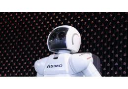 A Look into Intelligent Robotic Companions