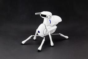 Antbo DIY Robot Kit - The Best Robot for Kids