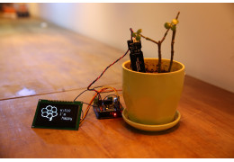 Gravity:Analog Capacitive Soil Moisture Sensor Review